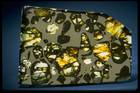 Photograph of the Esquel pallasite meteorite (USNM 6474)