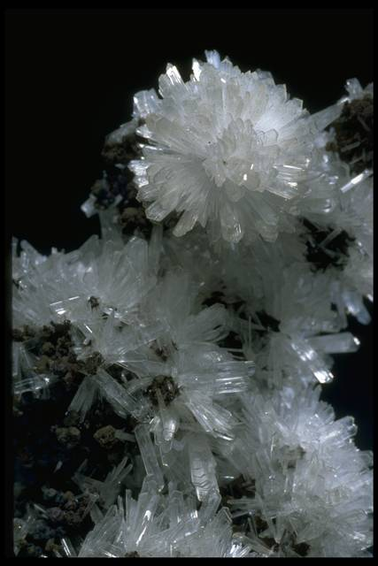 Close-up photograph of hemimorphite (NMNH R3898) from the National Mineral Collection