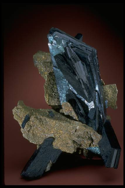 Photograph of vivianite with pyrite (NMNH R19035) from the National Mineral Collection