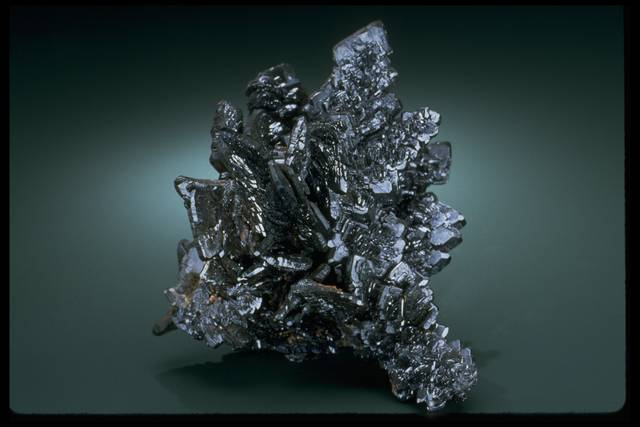 Photograph of descloizite (NMNH C7001) from the National Mineral Collection