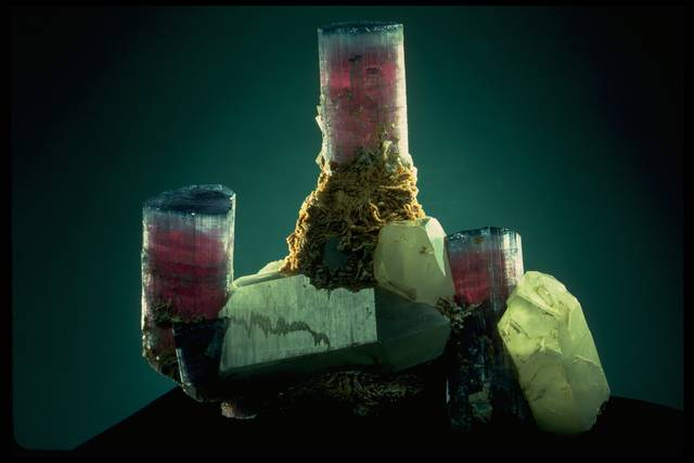 Photograph of elbaite candelabra (132377) from the National Mineral Collection