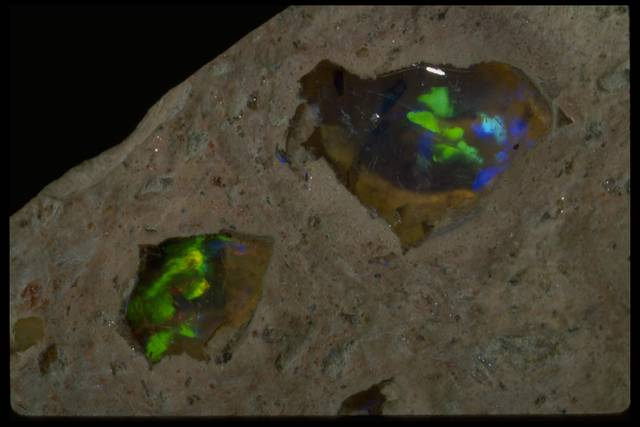 Close-up photograph of opal in matrix (NMNH R16195) from the National Mineral Collection