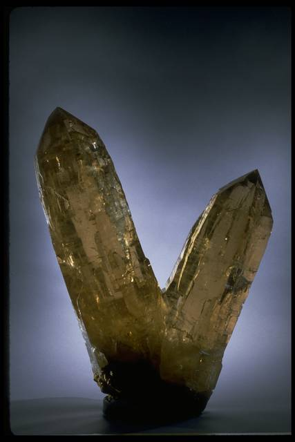 Photograph of large smoky quartz crystals (166840) from the National Mineral Collection