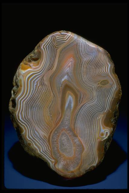 Photograph of finely contoured agate (115571) from the National Mineral Collection