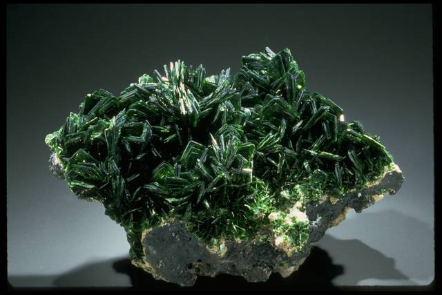 Photograph of metatorbernite (135004) from the National Mineral Collection