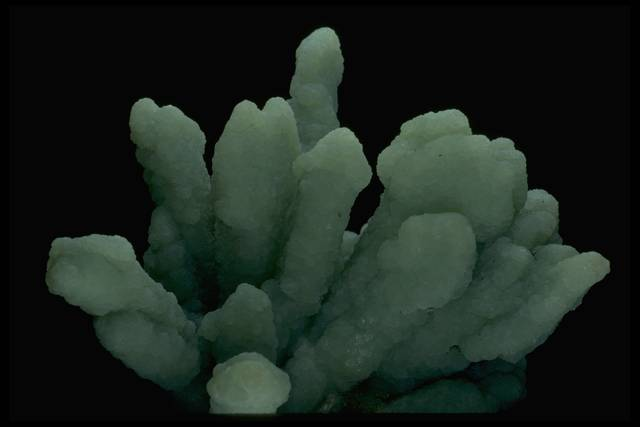 Photograph of prehnite (133266) from the National Mineral Collection
