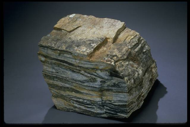 Photograph of a tonalitic gneiss (116542-1) from the National Rock & Ore Collection