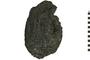 Image of Igneous Rock Pahoehoe Toe