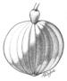 Amaranthaceae - Alternanthera pungens