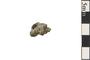 Image of Meteorite Bledsoe