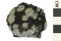 Image of Igneous Rock Snowflake Obsidian