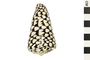 Image of Marble Cone
