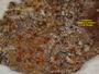 Lacrima epiphora image