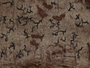 Arthonia varia image