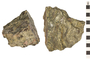 Image of Metamorphic Rock Gneiss