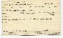 Caligus rufimaculatus Wilson, 1905