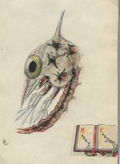 To NMNH Extant Collection (Grapsus grapsus larva (zoea))