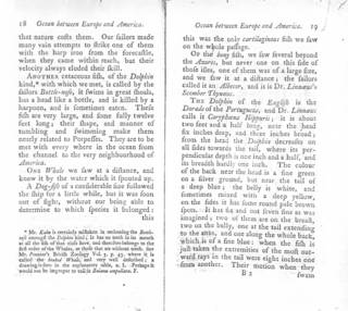 To NMNH Extant Collection (Forster in Kalm 1770 Travels into North America - p 18)