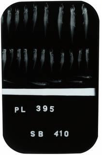 To NMNH Extant Collection (Jenkinsia lamprotaenia RAD100752-001)