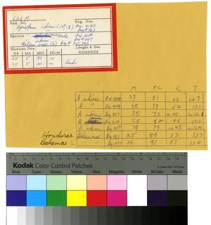 To NMNH Extant Collection (Scyliorhinidae RAD110107 thru RAD110172 Envelope)