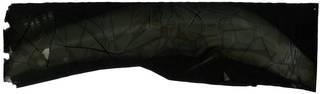 To NMNH Extant Collection (Syngnathus hildebrandi RAD116926-001)