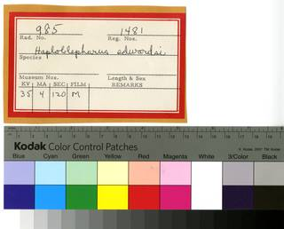 To NMNH Extant Collection (Haploblepharus edwardsii RAD110580 Envelope)