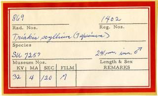 To NMNH Extant Collection (Triakis scyllium RAD110830 Envelope)