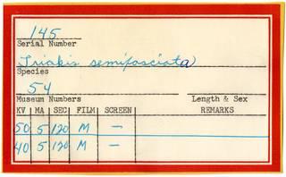 To NMNH Extant Collection (Triakis semifasciata RAD110834 Envelope)
