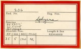 To NMNH Extant Collection (RAD110839 thru RAD110841 Envelope)