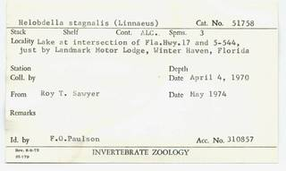 To NMNH Extant Collection (WRM USNM 51758 Card.)