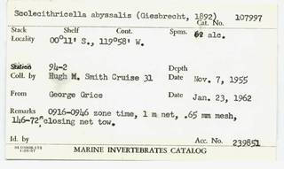 To NMNH Extant Collection (CRT-107997-=card.JPG)