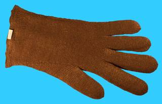 To NMNH Extant Collection (IZ MOL 149395 Pinna Glove)